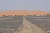 Merzouga - v pozadí duny