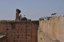 Marakéš Palác el-Badi