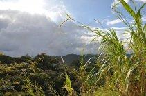 Kostarika (3)