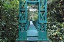 NP Monte Verde -Kostarika (3)
