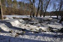 5. Ledová peřej v dolním toku Stropnice