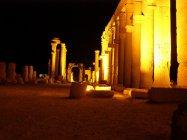 Palmýra (11)