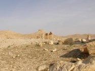 Palmýra (33)