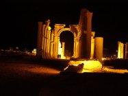 Palmýra (6)