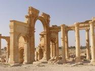 Palmýra (46)